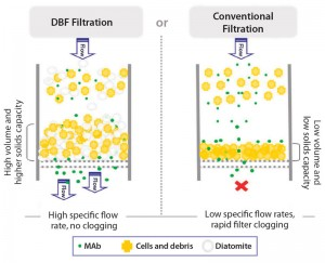 Figure 1: Filtration principle of dynamic body-feed filtration (DBF) with diatomaceous earth (DE) (left) and conventional filtration (right)