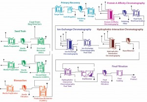 Figure 1:  Flow chart of an example MAb process