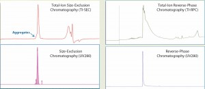 Figure 1: Total-ion (TI) size-exclusion chromatography (SEC, left) and reverse-phase chromatography (RPC, right) of MAb1 are listed in the upper panels, and their corresponding UV (280 nm) chromatograms are given in the lower panels. Both ultraperformance liquid chromatographic methods provide a single peak for mass analysis. But unlike RPC, the retention segment of an SEC peak would provide additional aggregate information.
