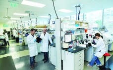 Tenants work at Bayer's first incubator for life-science startup companies
