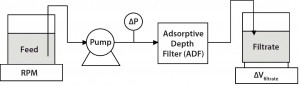 "Figure 1: Diagram of experimental set-up used to assess adsorptive depth filtration (ADF) in MAb-A and MAb-B processes following protein A; in this diagram ""ADF"" refers to either the terminal ADF, ADF prefilter, or a filter train consisting of an ADF prefilter and ADF in series. Unless otherwise specified, flux onto an ADF is standardized to 100 L/m2/hour."