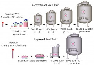 Figure 7: Comparing a conventional seed-train process to the future seed-train process for inoculation of a 10,000-L batch or fed-batch bioreactor; the future seed-train process uses high-density cell banking, disposables, and high-density perfusion at the n – 1 stage to eliminate two large-volume seed-train stages.