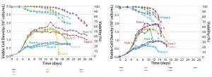Figure 4: Media screening with temperature shift (left); media screening with no temperature shift (right)