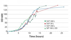 Figure 3: The 30- and 300-L single-use fermentor (SUF) performed comparable to the steam-in-place (SIP) 100-L fermentor; Escherichia coli BL21 DE3 cell density comparison (OD = optical density)
