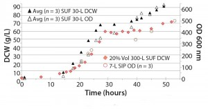 Figure 4: The 30 L and 300 L (at 20% volume) SUFs performed comparable to the SIP 7-L fermentor; Pichia pastoris GS115, 22 kDa protein; average comparison 640 OD600 nm, DCW 91.6 g/L (n =3); DCW= dry cell weight, OD = dry cell weight