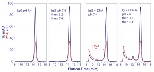 Figure 13: Promotion of aggregate formation by DNA in contact with IgG at pH 3.5