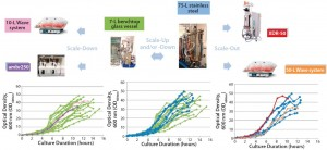 Figure 2: Scalability assessment of single-use systems tested against batch data from traditional 7-L bench-top glass and 75-L stainless steel vessels; graphs show growth profiles of E. coli DH1 represented as optical density at 600 nm (OD600nm) producing a range of different plasmid DNA sizes (2.5–12 kb) in five different systems at different scales.