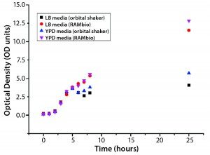 Figure 1: Arithmetic average of optical density (OD) as a function of culture time for Pichia pastoris pink in different shake-flask cultures