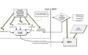 Figure 1: Biosolve Process cost of goods (CoG) and net present value (NPV) model configuration