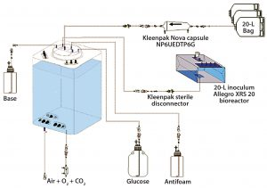 Figure 2: Experimental set-up for comparative cell culture study.