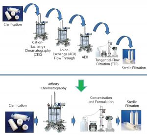 Figure 4: A paradigm shift in viral vector purification using the POROS CaptureSelect technology; standard purification processes require multiple chromatographic, filtration, and capture steps, which results in low yields and long process development timelines. POROS CaptureSelect technology obtains high purity and yield in a single step, which simplifies processes, shortens development timelines, and increases speed of therapeutics to market.