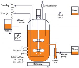 Figure 1: Set-up of a concentrated perfusion or fed-batch set-up using the Biostat STR single-use bioreactor