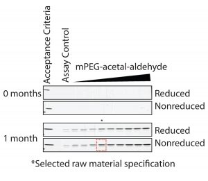 Figure 7: Formation of degradation product under accelerated degradation conditions