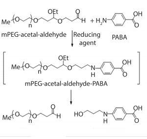 Figure 2: Derivatization of mPEG-acetalaldehyde impurity using PABA