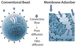 Figure 2: Conventional chromatography compared with membrane adsorbers