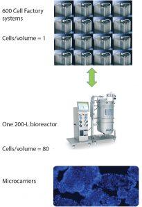 Figure 1: Efficiency of Lonza bioreactor platform over traditional 2D planar culture methods