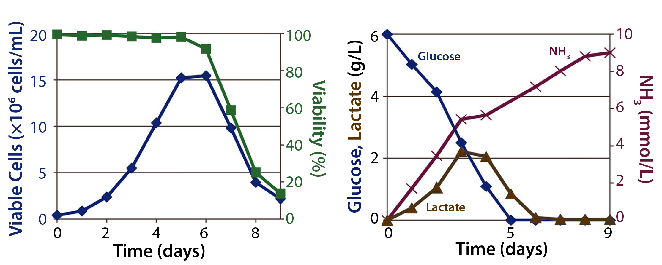 comparing the rate of fermentation of Additives on in vitro ruminal fermentation characteristics of rice straw  242 additives on in vitro ruminal fermentation  b = fermentation rate of a.