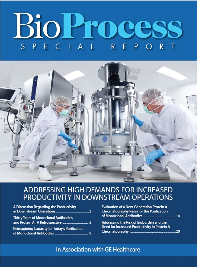 Downstream Special Report